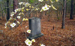 MacLeod grave